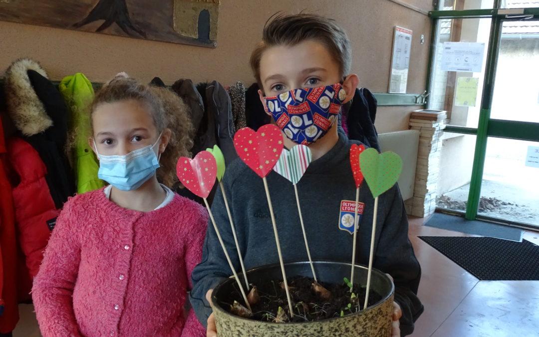 Des fleurs pour l'EHPAD des Tilleuls