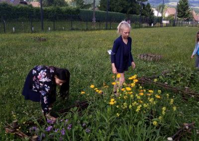 Les jardins cartusiens